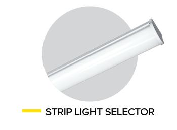 Strip Image