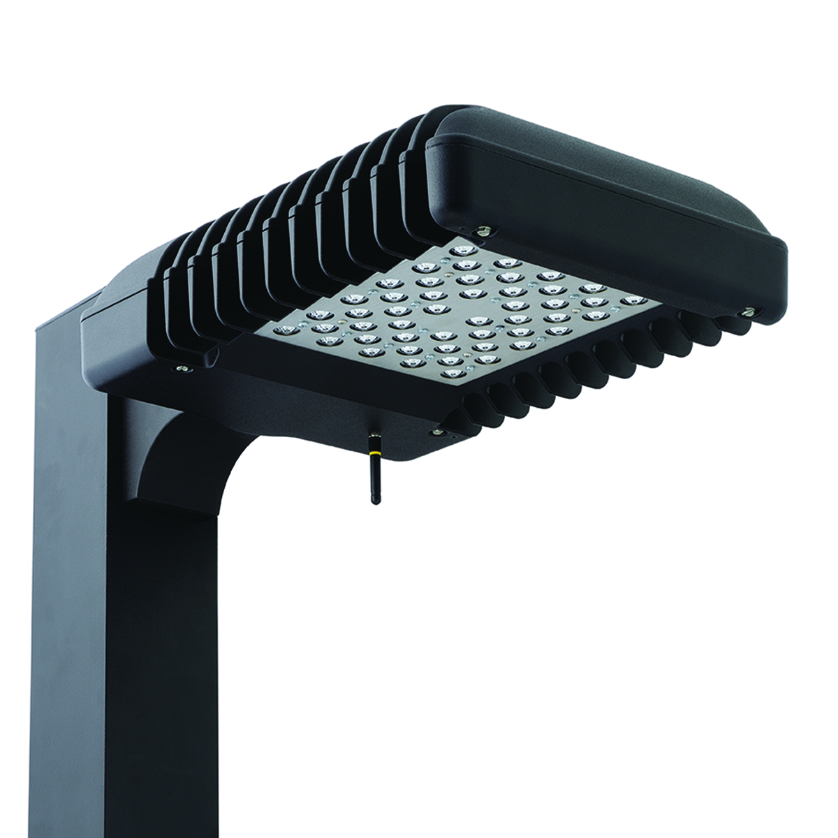 Cimarron Led Cl1s Pedestrian Scale Hubbell Outdoor Lighting