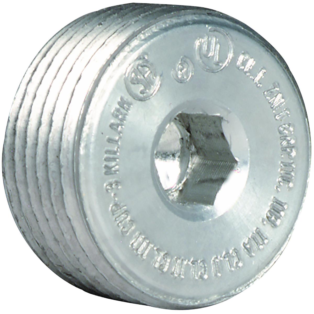 KIL CUP-6 2-IN RECESSED HEAD PLUG CS=20