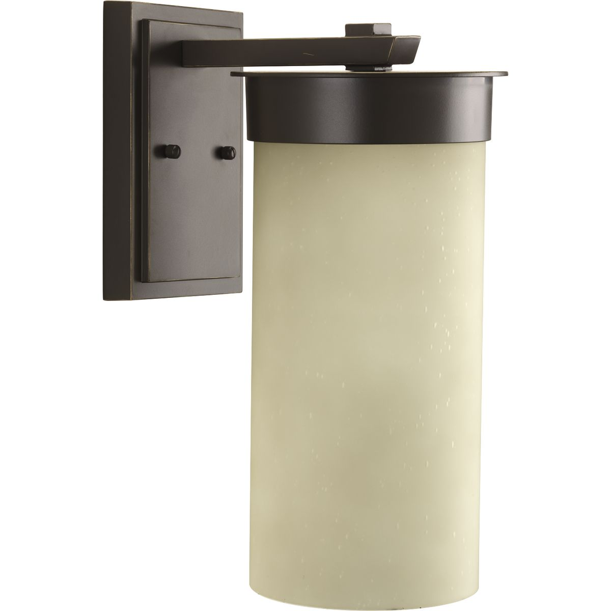 Hawthorne Collection One Light Large Wall Lantern P5665 20
