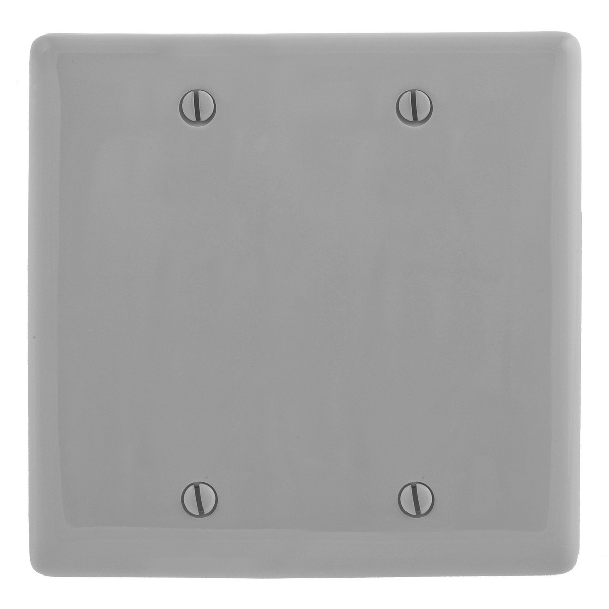 Hubbell NP23GY 2-Gang Gray Nylon Box Mount 2-Blank Wall Plate
