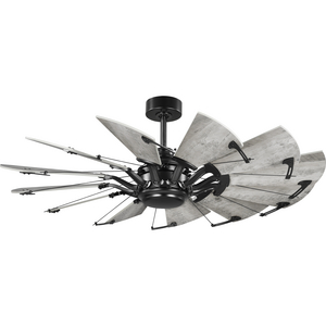 Springer Collection 52-Inch Matte Black 12-Blade DC Motor Windmill Ceiling Fan
