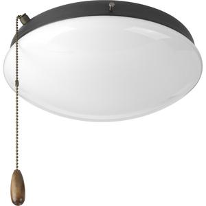 Two-Light Universal Opal Glass Fan Light Kit