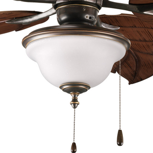 Ashmore Collection Two-Light Ceiling Fan Light