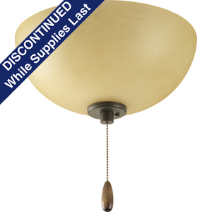 Bravo Collection Two-Light Ceiling Fan Light