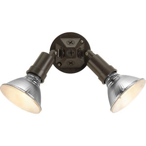Two-Light Adjustable Swivel Flood Light