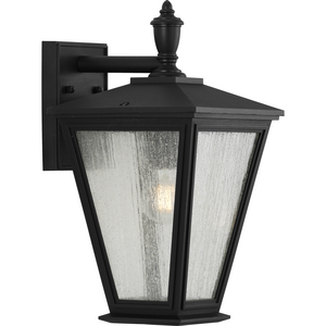 Cardiff Collection One-Light Medium Wall Lantern with DURASHIELD