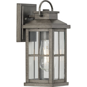 Williamston Collection One-Light Antique Pewter and Clear Glass Transitional Style Small Outdoor Wall Lantern