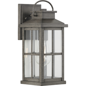 Williamston Collection One-Light Antique Pewter and Clear Glass Transitional Style Medium Outdoor Wall Lantern