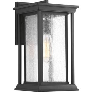 Endicott Collection One-Light Medium Wall Lantern