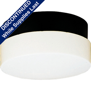 """Hard-Nox Collection 12"""" Two-Light Wall or Ceiling Fixture"""