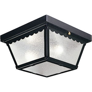"""Two-Light 9-1/4"""" Flush Mount for Indoor/Outdoor use"""