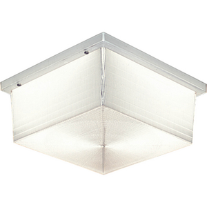 """Hard-Nox Collection 10-1/2"""" Two-Light Wall or Ceiling Fixture"""
