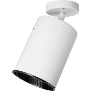 One-Light Multi Directional Wall/Ceiling Heat Lamp