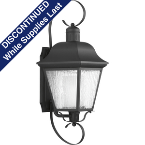 Andover Collection CFL One-Light Large Wall Lantern