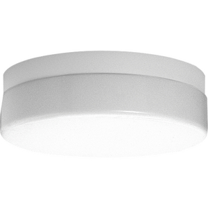 """Hard-Nox Collection Two-Light 14"""" CFL Close-to-Ceiling"""