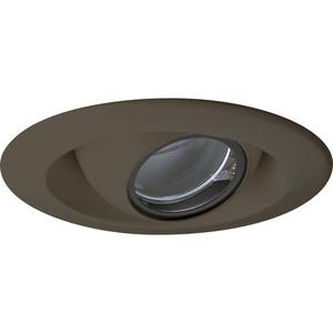 """4"""" Pinhole Trim for Low Voltage Housing (P816/P817/P818)"""
