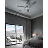 PROG_FARRIS-P250002-009-Bedroom_appshot