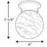 PROG_P3401dimensions_lineart