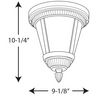PROG_P3883-xxWBdimensions_lineart